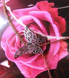 papillonsurrose.jpg